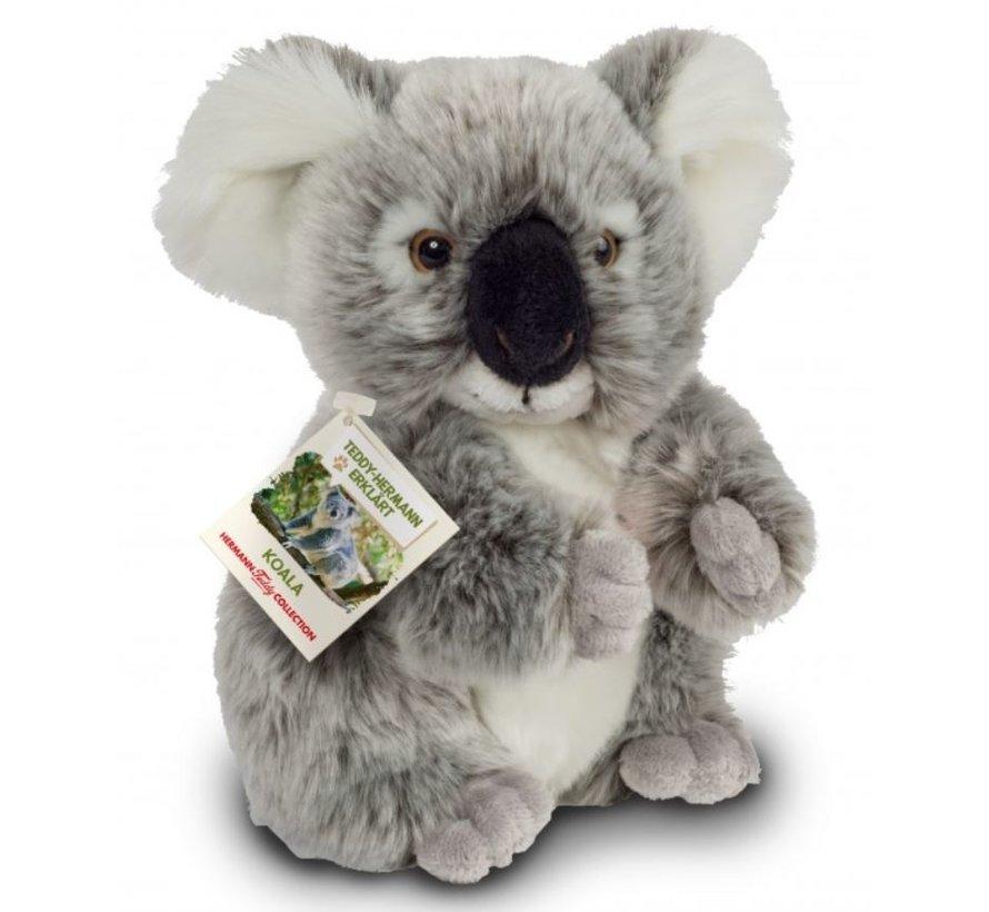 Stuffed Animal Koala