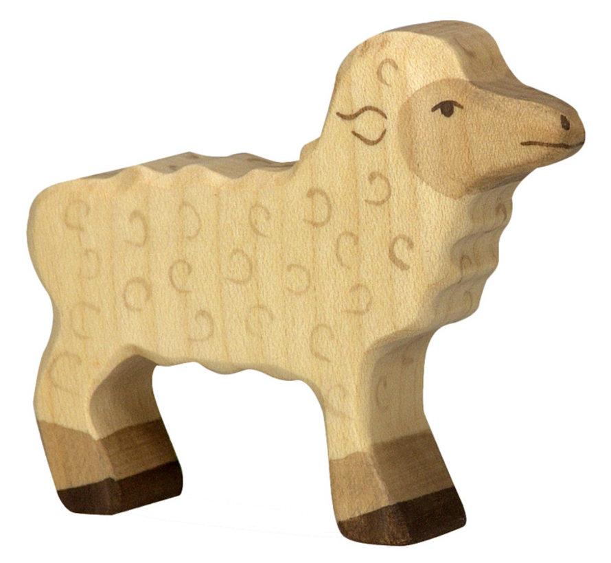 Lamb 80076