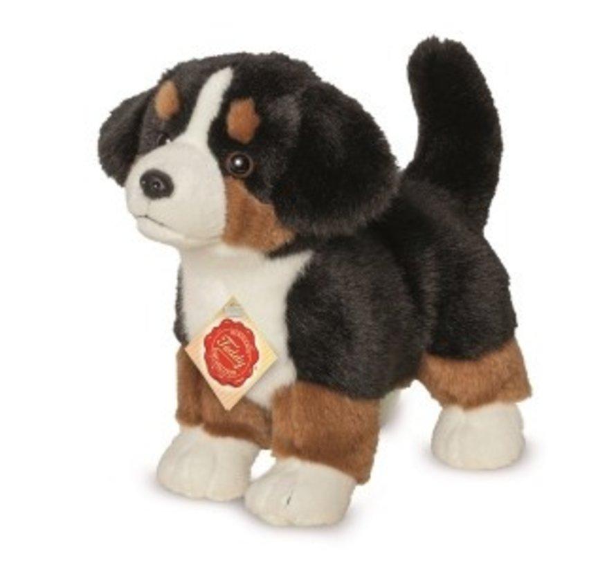 Knuffel Berner Sennenhond Puppy
