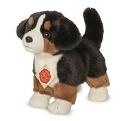 Hermann Teddy Knuffel Hond Berner Sennen Puppy
