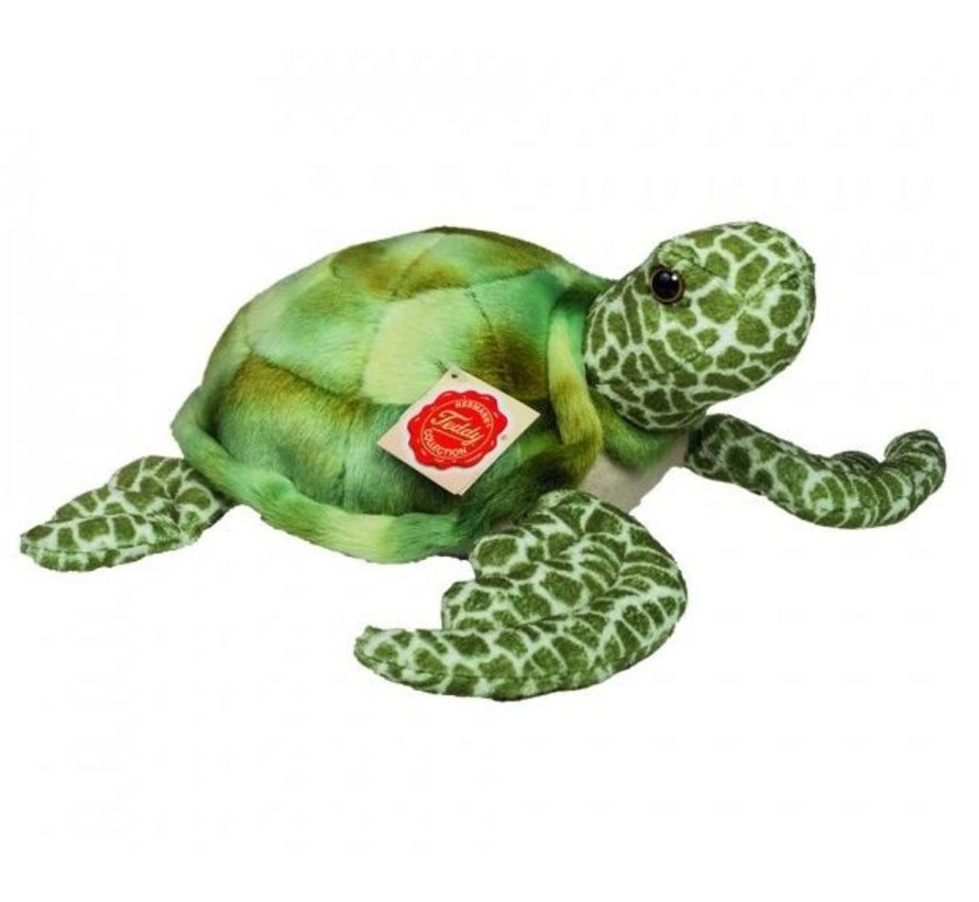 Knuffel Waterschildpad