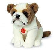 Hermann Teddy Knuffel Hond Engelse Bulldog