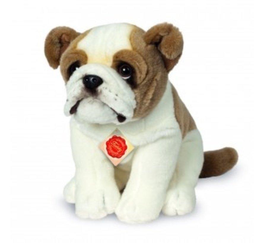 Knuffel Hond Engelse Bulldog