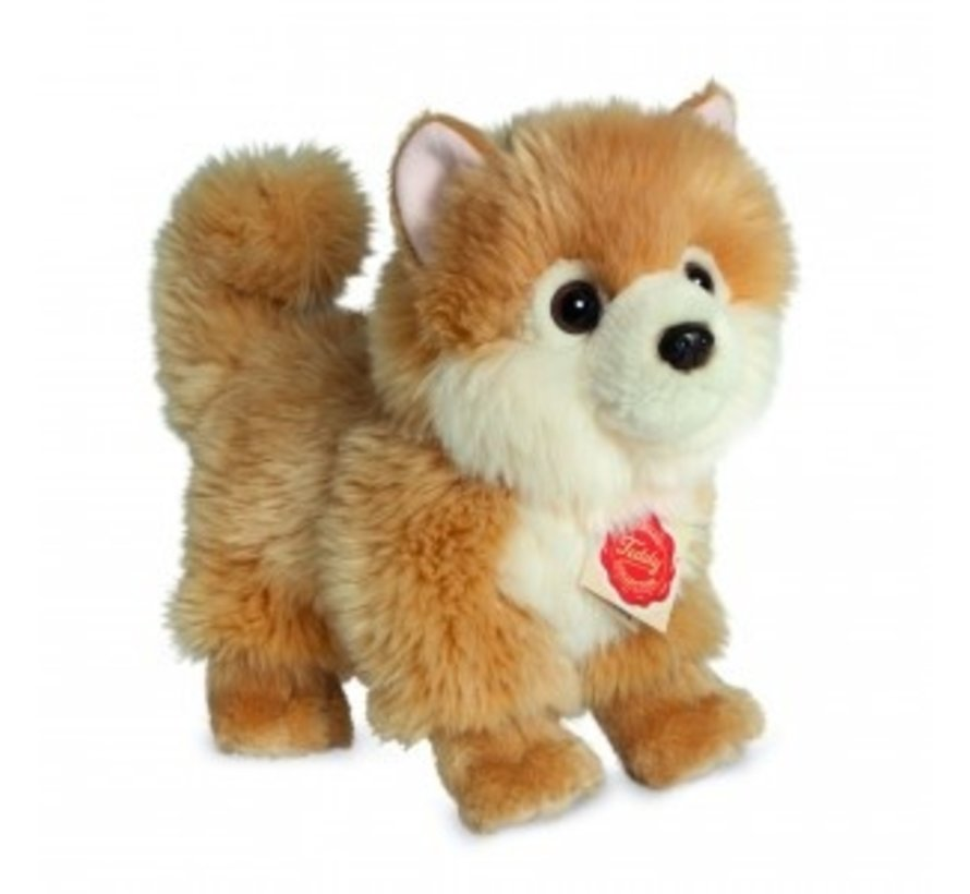 Stuffed Animal Dog Spitz