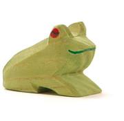 Ostheimer Frog Sitting 1636