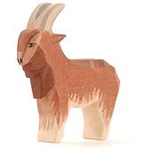 Ostheimer Goat Male 11711