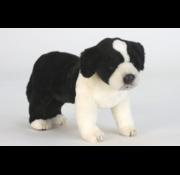 Hansa Knuffel Hond Border Collie Pup