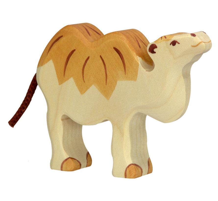 Camel 80166