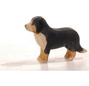 Ostheimer Hond Berner Sennen 10521