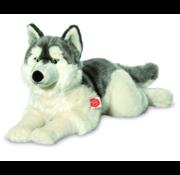 Hermann Teddy Stuffed Animal Dog Husky Lying Down