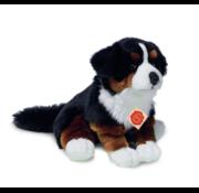 Hermann Teddy Stuffed Animal Bernese Moutain Dog