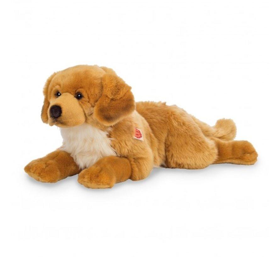 Stuffed Animal Dog Golden Retriever