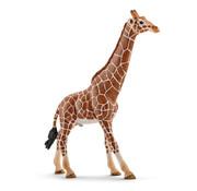 Schleich Giraffe, male 14749
