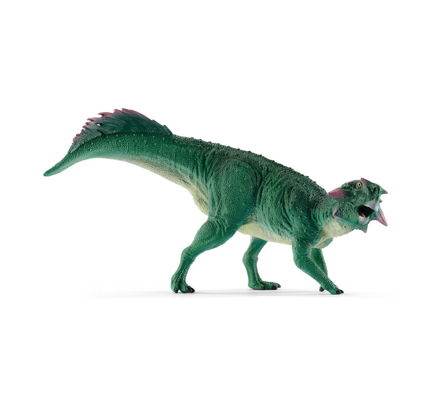 Psittacosaurus 15004