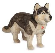 Hermann Teddy Knuffel Hond Husky Staand Groot