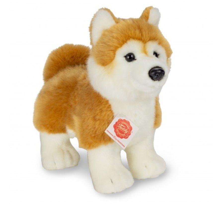 Knuffel Hond Shiba Inu Staand