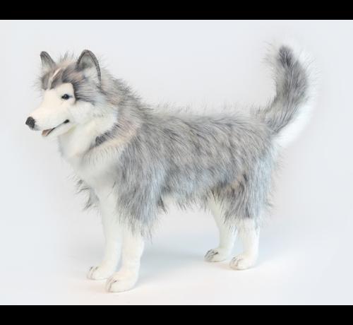 Hansa Cuddly Animal Husky Gray Standing