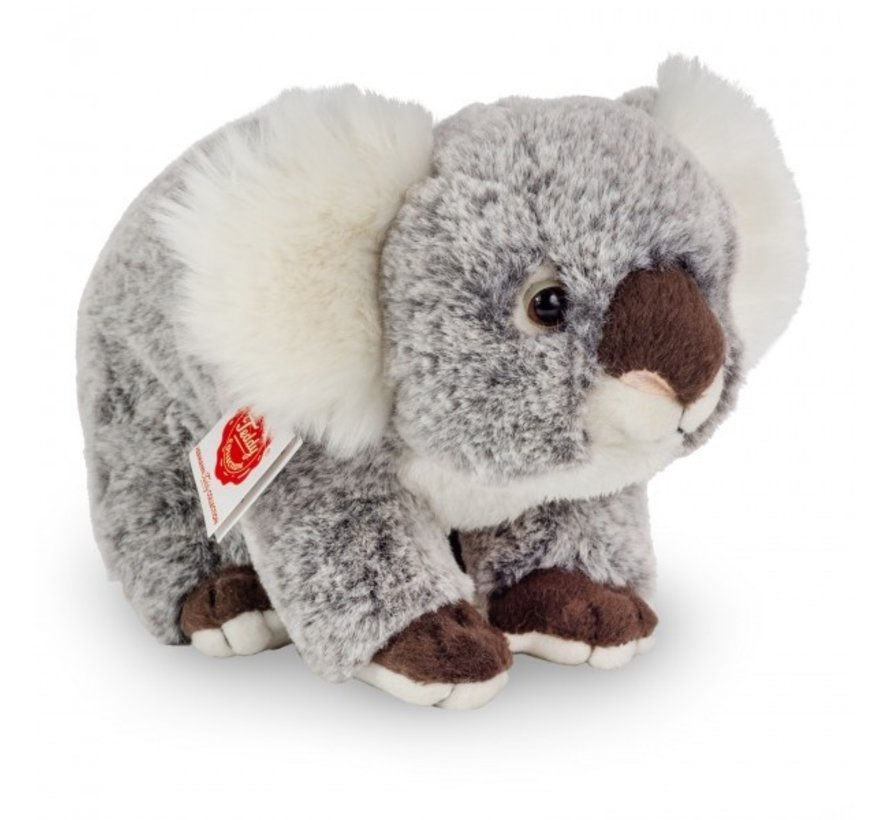 Stuffed Animal Koala Sitting