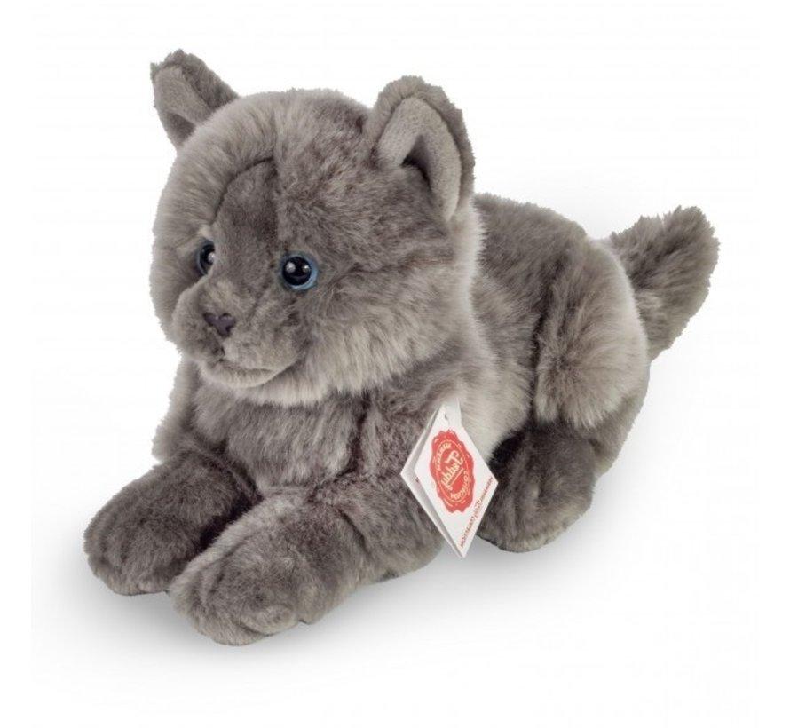 Stuffed Animal Cat Chartreux