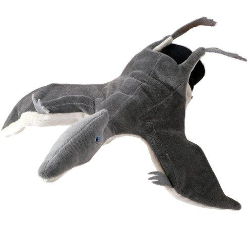 Beleduc Handpop Pterodaktylus