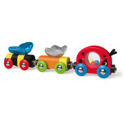 Hape Trein Lieveheersbeestje Lucky Ladybug and Friends Train