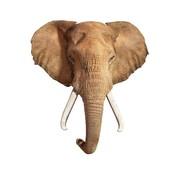 Madd Capp Puzzel Olifant I AM Elephant Poster Size 700pcs