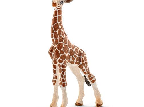 Schleich Giraf Kalf 14751