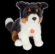 Hermann Teddy Stuffed Animal Dog Border Collie tri-color