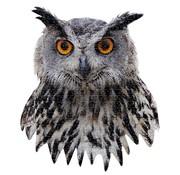 Madd Capp Puzzle I AM Owl 550 pcs