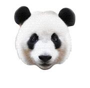 Madd Capp Puzzel Panda I AM Panda 550 pcs