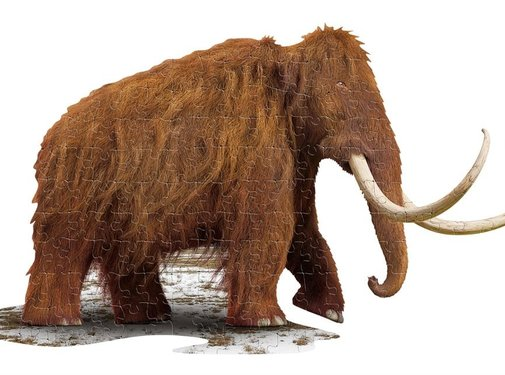 Madd Capp Puzzle I AM Woolly Mammoth 100pcs