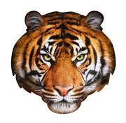 Madd Capp Puzzles 300: I AM Tiger