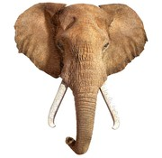 Madd Capp Puzzel Olifant I AM Elephant 300pcs