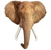 Madd Capp Puzzles 300: I AM Elephant