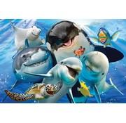 Puzzel 3D Oceaan Selfie 48pcs
