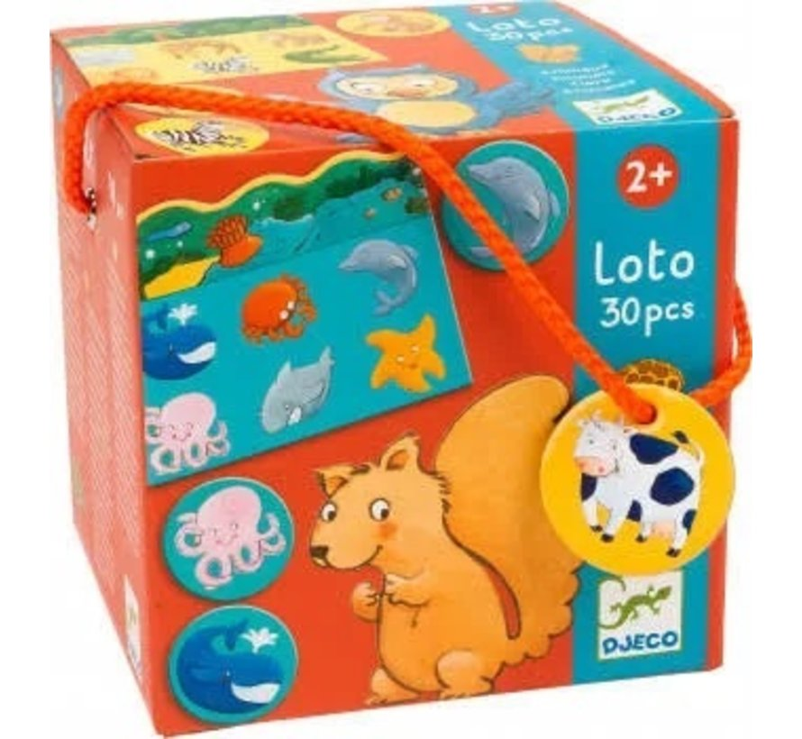 Lotto Animals