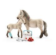Schleich Paard Rescue Set Horse Club Hannah 42430