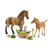 Schleich Horse Club Sarahs Zorg voor Jonge Dieren 42432
