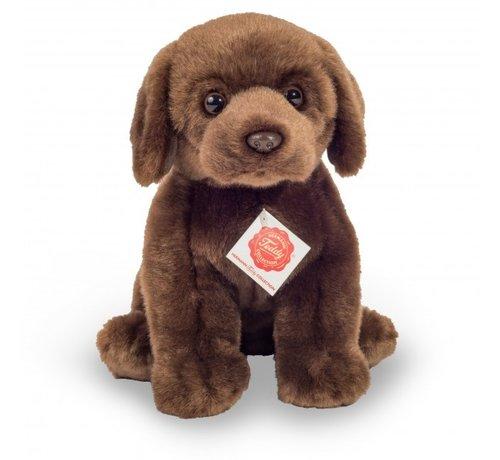 Hermann Teddy Knuffel Hond Labrador Bruin