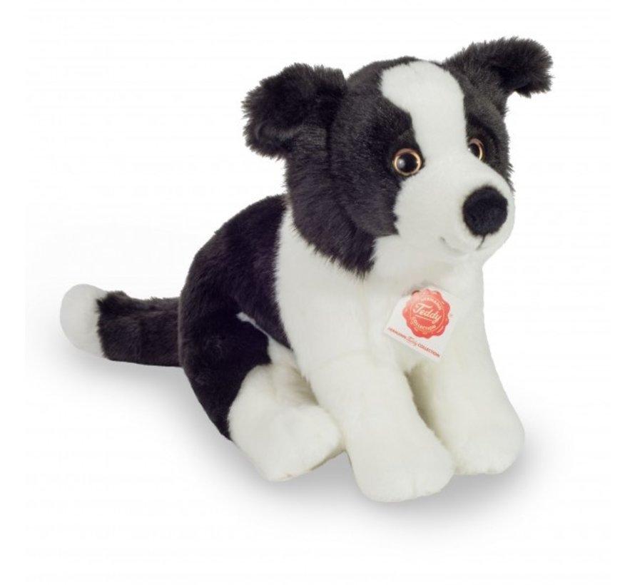 Knuffel Hond Border Collie Puppy
