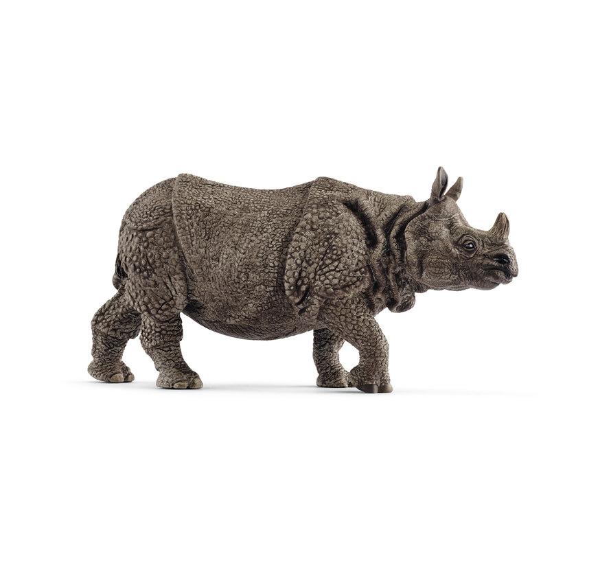 Indian Rhinoceros 14816