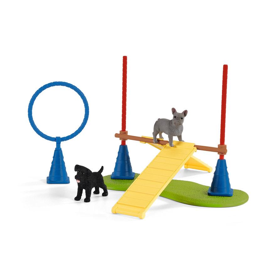 Puppy Agility Training 42536