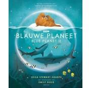 Lemniscaat Blauwe Planeet Blue Planet II