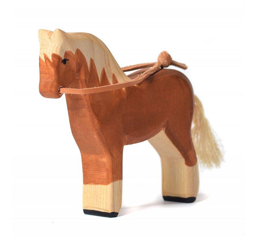 Paard met Teugel