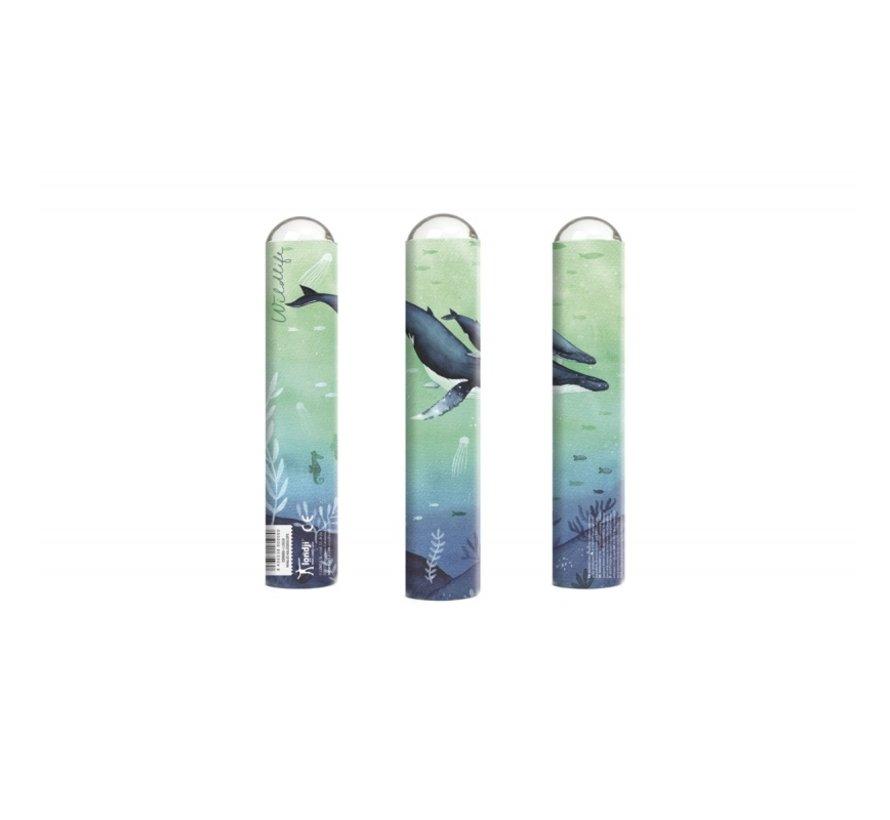 Caleidoscoop Whales