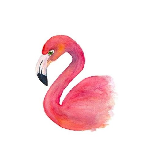 Fritsy Postkaart Flamingo