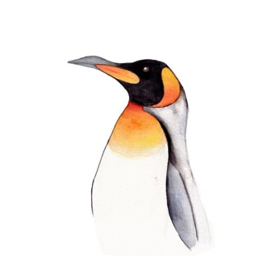 Postkaart Pinguin