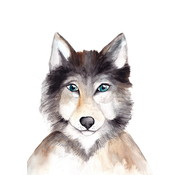 Fritsy Postkaart Wolf
