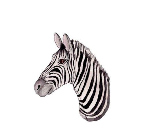 Fritsy Postkaart Zebra