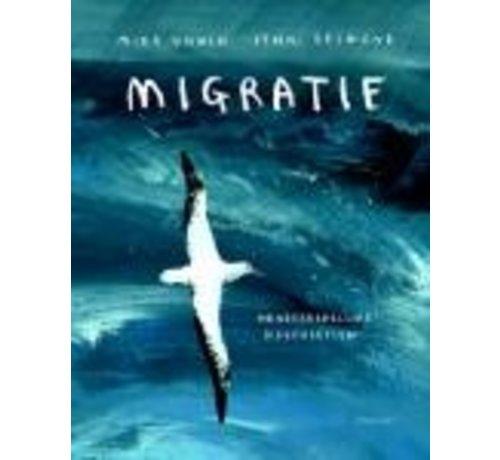Lemniscaat Migratie